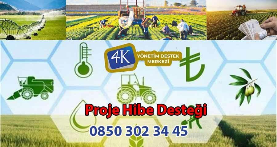 İstanbul Proje Hibe Desteği